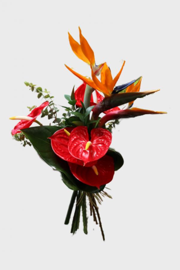 flores-da-madeira