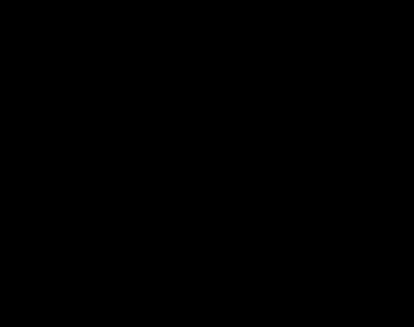 Dracaena em base Cerâmica